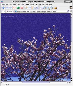 [png-MagnoliaAlpha.html half-scale screenshot (36k)]