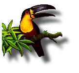 [toucan and shadow, 255-color/alpha palette image]